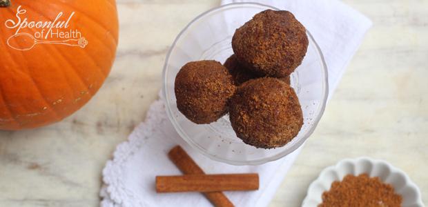 Pumpkin Spice Cake Balls {paleo, vegan, raw}