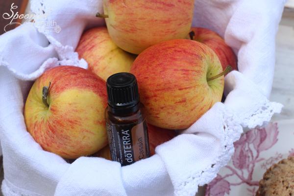 Cinnamon-Apple-Pie-3